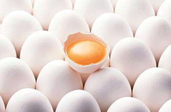薄毛に効く 食べ物 卵